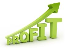 maximizing-profits